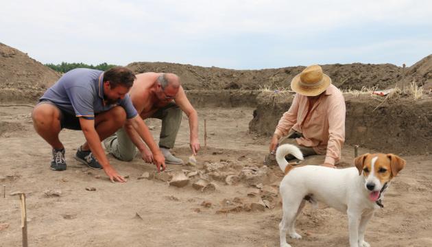 Археологи поновлять розкопки найбільшого міста трипільців