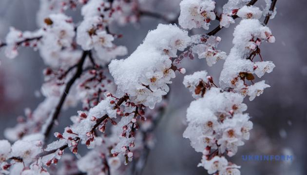 На Благовіщення в Україні - холодна погода з дощами та мокрим снігом