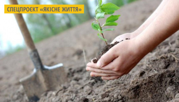 В Івано-Франківську кожен може придбати подарунковий сертифікат на висадку свого дерева