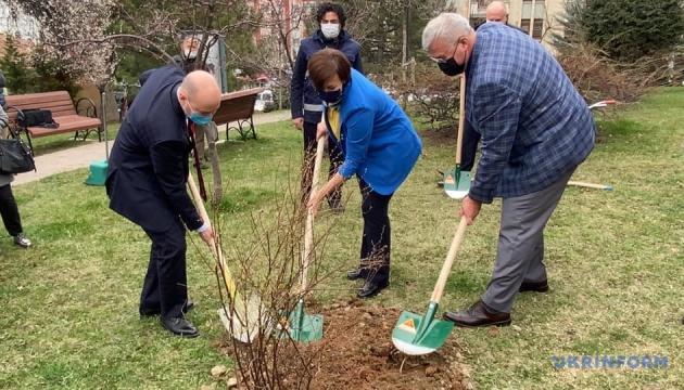 В Анкарі в рамках Greening of the Planet висадили дерева та кущі з України