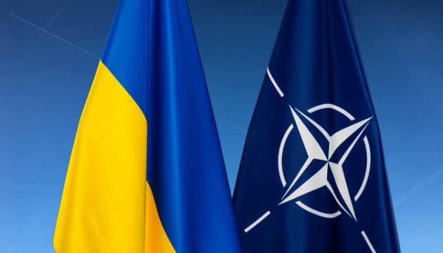 Litwa zwróci się do NATO o przekazanie Ukrainie Planu Działań na rzecz Członkostwa
