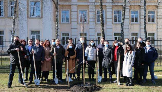 У Києві висадили «Алею єдності»
