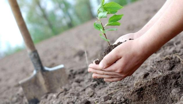 «Озеленення планети»: третій Президент, урядовці та посли висадять дерева у Пущі-Водиці