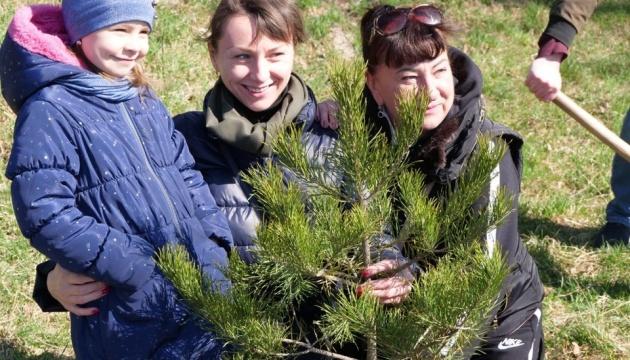 У Житомирі висадили тисячу дерев