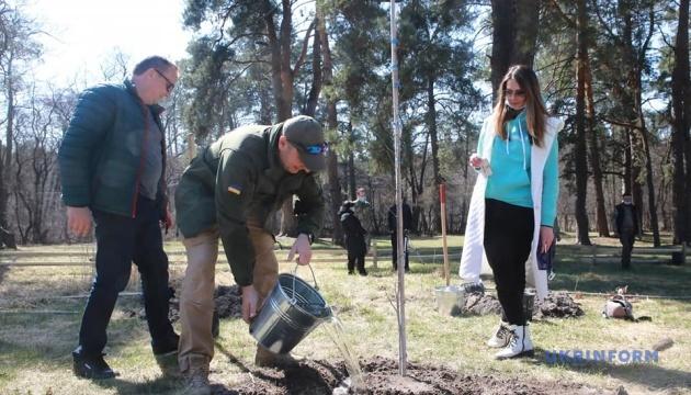 Под Киевом проходит акция «1 миллион деревьев за сутки в 100 странах мира»