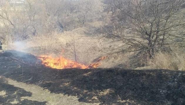 Кількість пожеж в екосистемах Луганщини за останні дні зросла у 16 разів