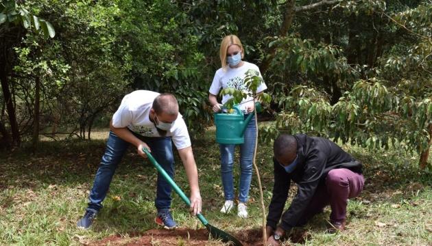 Представники української спільноти Кенії висадили саджанці екзотичних дерев