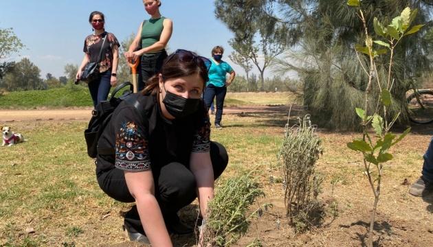 Посольство України у Мексиці провело екологічну акцію в Мехіко