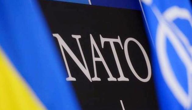 Референдум про вступ до НАТО: чи на часі?