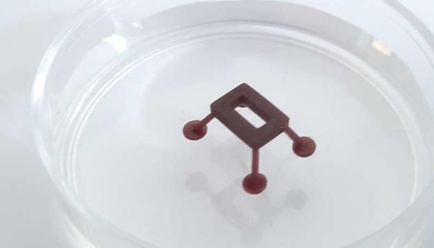 «Роботов-водомерок» научили скользить по жидкости с помощью лазера