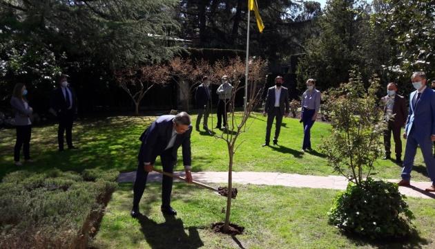 Посольство України в Іспанії долучилося до акції «Озеленення планети»