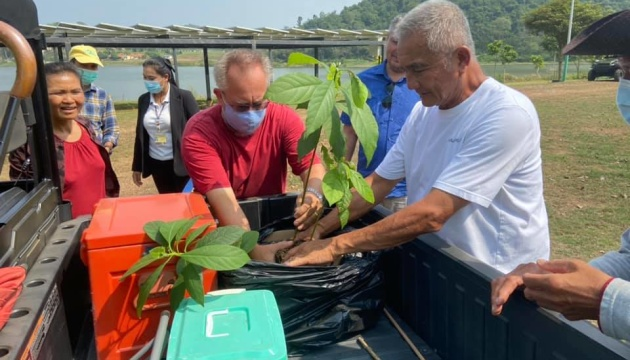 Українці Таїланду та М'янми висадили дерева у межах екологічної акції
