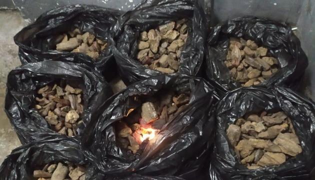 Львовские пограничники выявили крупнейшую с начала года контрабанду янтаря