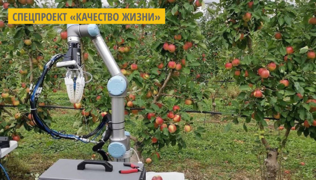 В Австралии разработали робота, который может собирать одно яблоко за 7 секунд