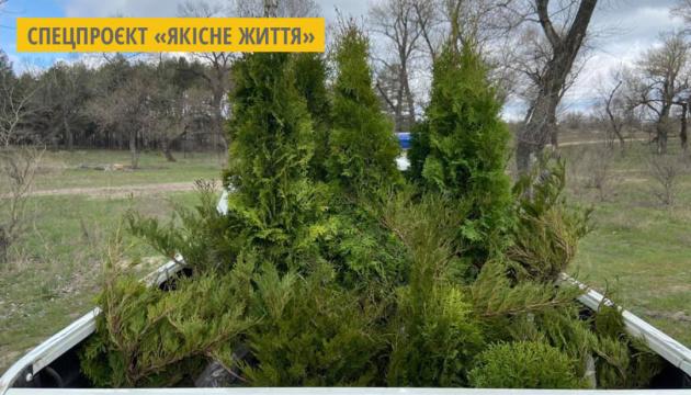 Рівненщина – у лідерах з озеленення України