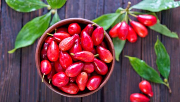 Звездный час «шайтановой ягоды»