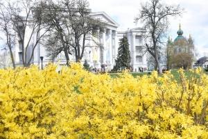 У Києві сьогодні безкоштовний вхід до муніципальних музеїв