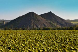 Справедлива трансформація вугільних регіонів: особлива задача на десятиліття