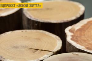 З коріння старих дерев: тернополянин виготовляє унікальні меблі