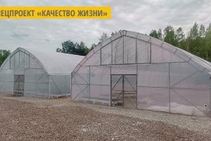 На Житомирщине создан специализированный банк семян хвойных и лиственных деревьев