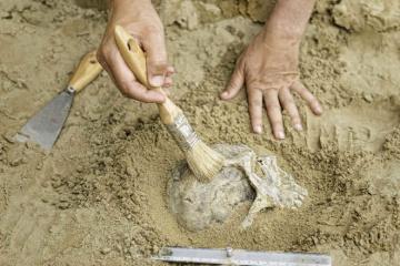 У печері неподалік Рима знайшли останки неандертальців