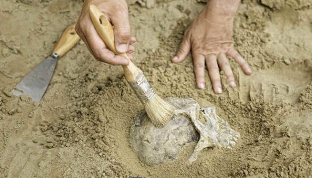 В пещере неподалеку от Рима нашли останки неандертальцев