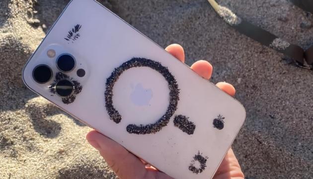 Слишком много магнитов: iPhone 12 притягивает к себе песок