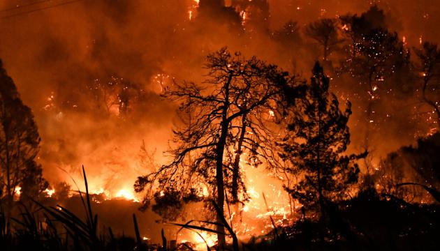 В Анталії ввели обмеження через небезпеку лісових пожеж