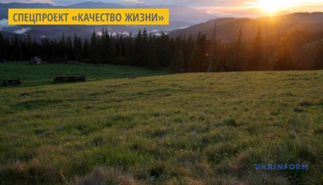 На Прикарпатье в горах построят центр отдыха и реабилитации детей-сирот