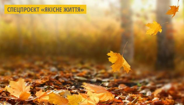 Український стартап продає папір з опалого листя