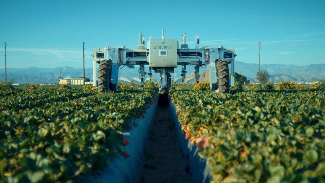 Agrobot