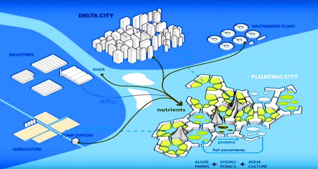 """дрейфуюча екосистема від """"DeltaSync"""" - звязки із сушею"""