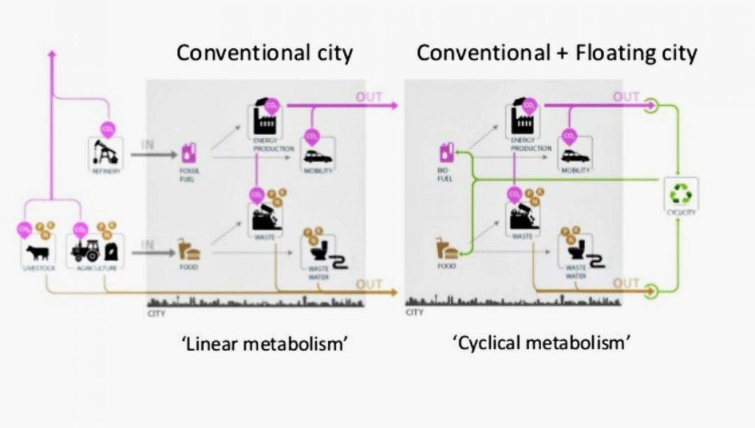 """дрейфуюча екосистема від """"DeltaSync"""" - лінійний метаболізм та метаболізм закритого циклу"""