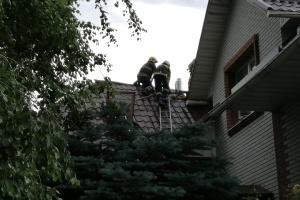 Під Запоріжжям блискавка влучила у будинок - пожежу гасили понад 20 рятувальників