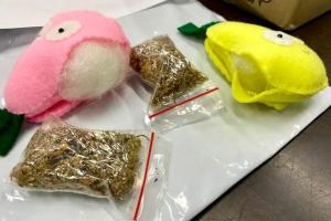 У посилці іграшок з Індонезії митники знайшли наркотики