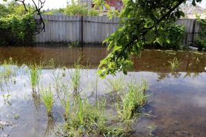 У Дніпрі через дощі підтопленими залишаються пів сотні приватних будинків