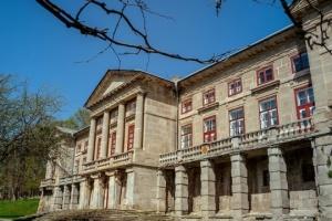 На Хмельниччині біля палацу Орловських влаштують велику косовицю та артпікнік