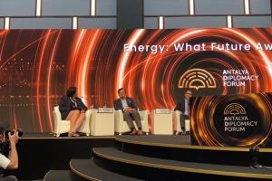 Украина работает над подготовкой к экспорту в ЕС «зеленого» водорода - Кулеба