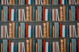 «Виват» на Книжном Арсенале: История мира, Netflix и культура инноваций