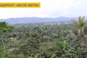 Габон - перша африканська країна, якій заплатили за захист тропічних лісів