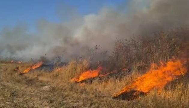 В Израиле из-за аномальной жары начались пожары