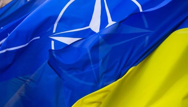 Украина догнала Грузию на пути в НАТО – это хорошо, но этого мало