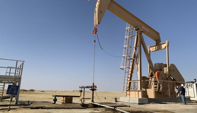 Нафтогаз затвердив програму розвитку активів у Єгипті