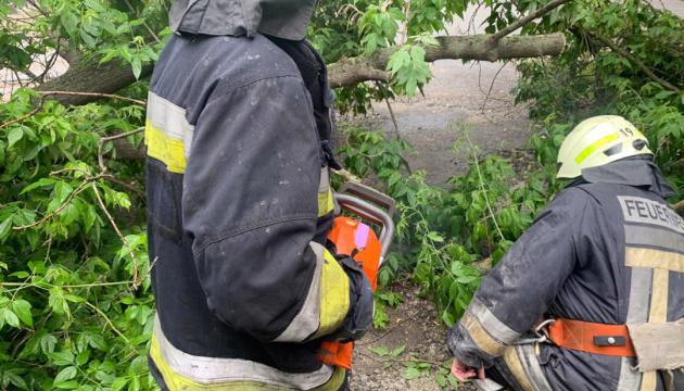 Вітер і зливи повалили у Дніпрі майже 90 дерев