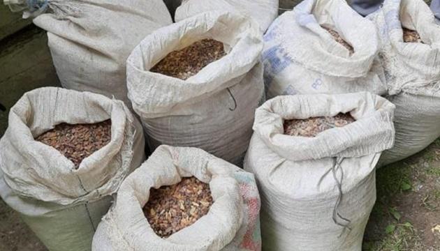 На Ривненщине СБУ «накрыла» контрабанду янтаря почти на 5 миллионов