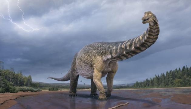Вчені класифікували новий вид динозавра - одного з найбільших, які жили на Землі