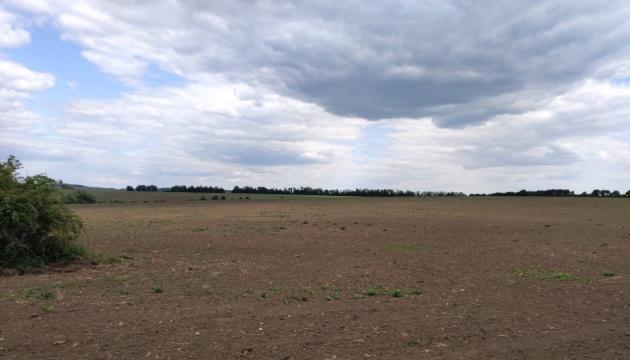 Кукурудзою засіяли понад 11 гектарів нацпарку «Подільські Товтри»