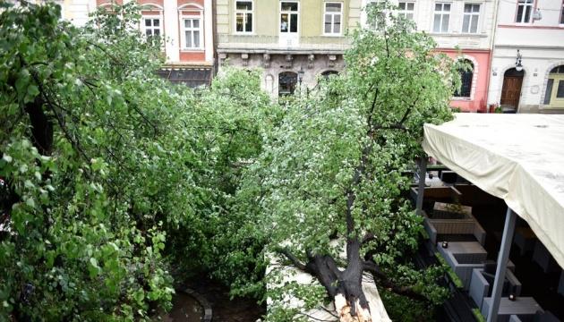 Негода у Львові: вітер зірвав дахи з дев'яти будинків