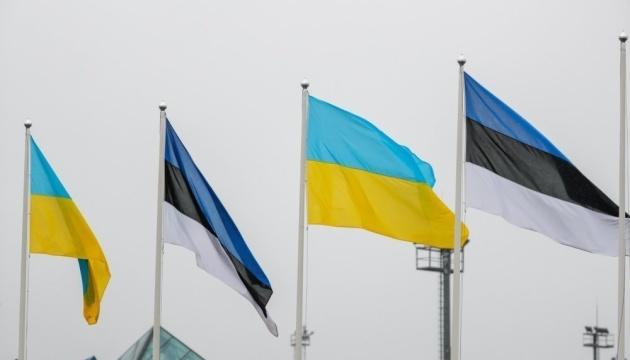 Українці Естонії до ювілею Конституції України провели круглий стіл