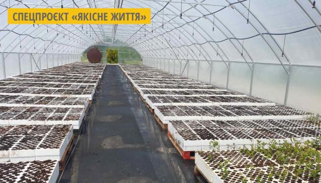 У лісгоспі на Буковині збудували високотехнологічну теплицю на 500 квадратних метрів